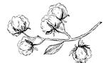 Онлайн-журнал про ткани иодежду