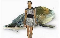Одежда из кожи рыбы: современные изделия из кожи рыб
