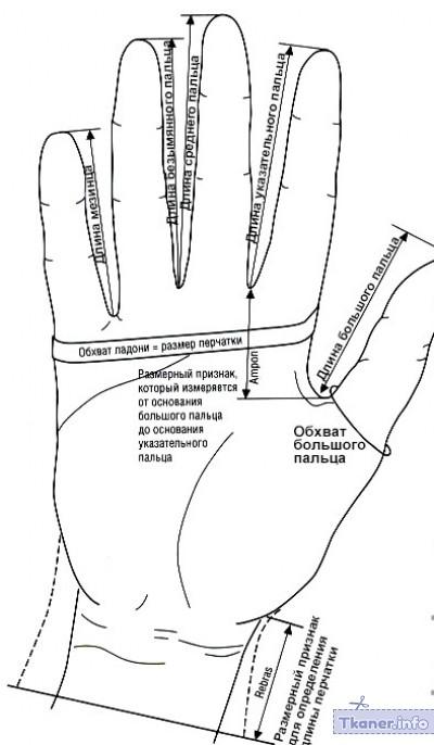 Перчатки без пальцев мерки руки