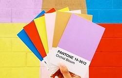 Модные цвета одежды в 2020 году, выбранные Pantone